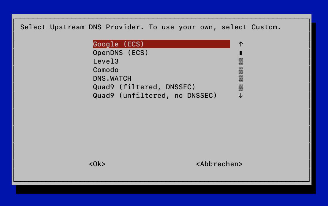 Pi-hole DNS Auswahl